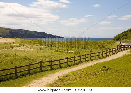 Wooden Fence running along a costal path