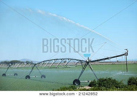 Molhar um campo de alfafa, sul do Oregon.