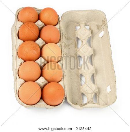 Ten Eggs In A Box #3
