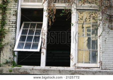 Windows In New Orleans