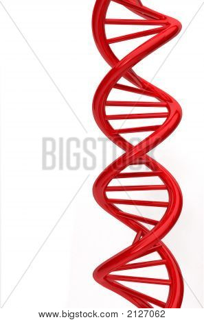Red DNA