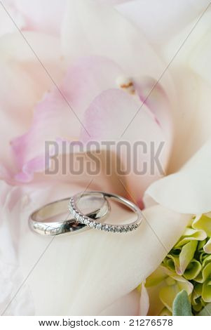 wedding rings on bed of flowers