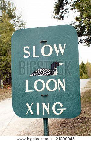 Loon Crossing