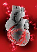 Постер, плакат: Искусственное сердце человека