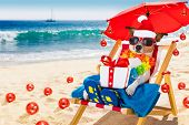 Dog In Hammock  As Santa Claus On Christmas At The Beach poster