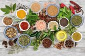 Spice and herb seasoning with fresh and dried herbs and spices, including chili pepper selection, mu poster