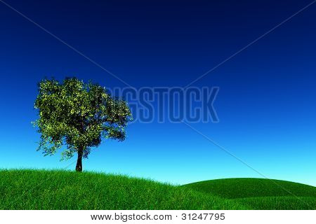 Tree on Green Field 3D render