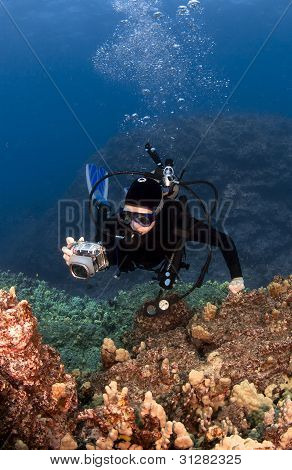 Scuba Diver Photographing The Coral