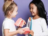 Two Children Kids Friends With Toothbrushes Hold Big Dental Implant Model Try To Brush Teeth. Oral H poster