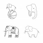 Bitmap Design Of Elephant And Asian Sign. Collection Of Elephant And Elephant Stock Bitmap Illustrat poster