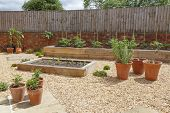 Raised Beds In A Kitchen Vegetable Garden With Hard Landscaping, Gravel, Terracotta Plant Pots And R poster