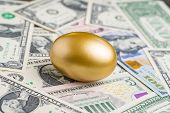 Shiny Golden Egg On Pile Of Us America Dollar Banknotes Money Metaphor Of Finding The Unbelievable G poster