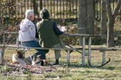 picture of senior-citizen  - seniors having lunch in the park - JPG