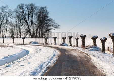 Curves In A Snowy Dutch Landscape