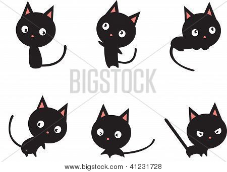vector black cat