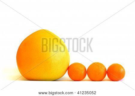 Tangerines and grapefruit