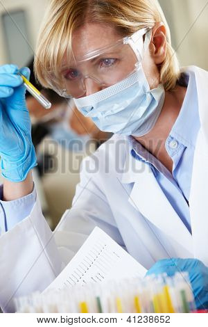 Female Scientist Studying Test Tube In Laboratory