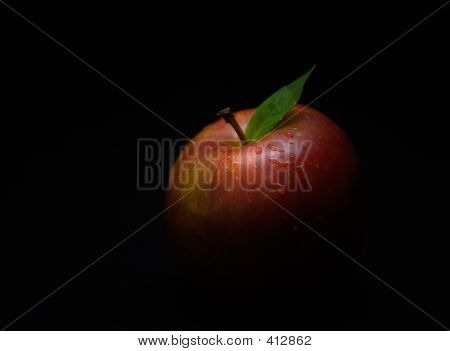 Food Apple Red