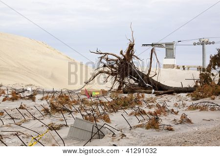 SEASIDE HEIGHTS, NJ - JAN 13: An uprooted tree and rebar in the sand on January 13, 2013 in Seaside Heights, New Jersey. Clean up continues 75 days after Hurricane Sandy struck in October 2012.