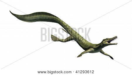 Mesosaurus - Aquatic Dinosaur