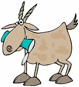 picture of billy goat  - This illustration depicts a Billy goat with a tin can in its mouth - JPG