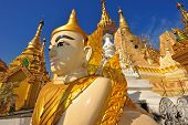 picture of yangon  - Lion Sculpture around schwedagon pagoda in Yangon Myanmar - JPG