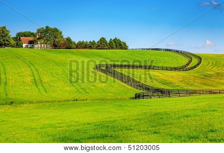 Horse farm with black wooden fences