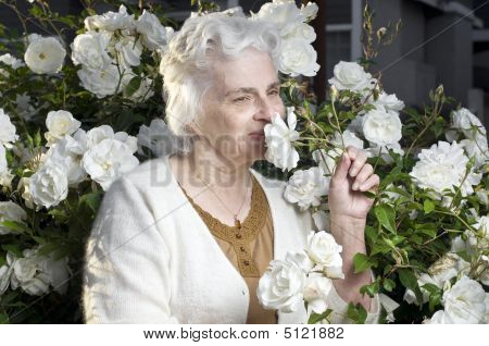 Happy Senior Lady In The Rose Garden