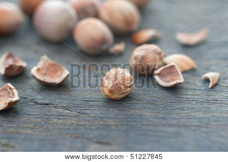 Kernel Of A Hazelnut And Nutshell
