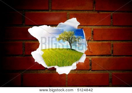 Summer Landscape Behind Brick Wall Hole