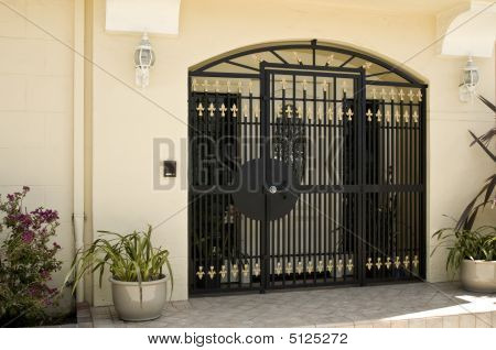 Beautiful Security Gate