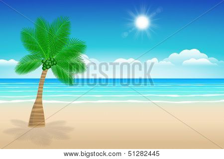 Background Sea Sand And Coconut Trees.