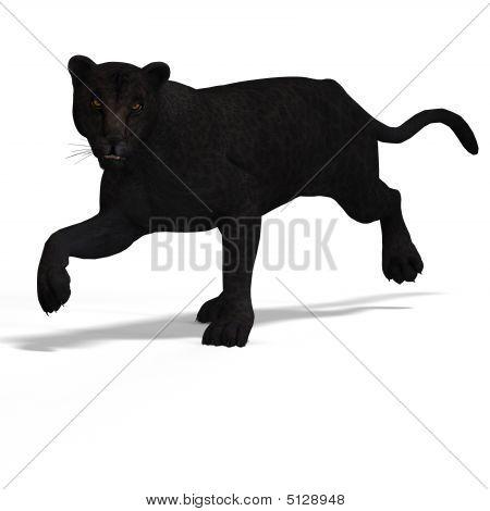 Big Cat Leopard Black