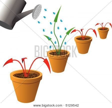 Arrows In Flowerpots