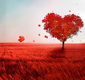 stock photo of lonely  - Tree of love - JPG