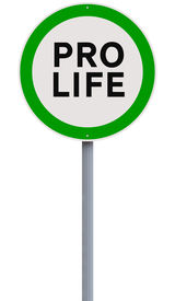pic of pro-life  - A conceptual road sign on being pro - JPG