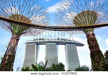 Marina Bay Sands and Supertree Grove Singapore.