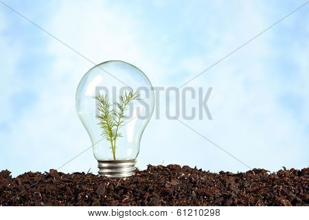 electric bulb on earth with plant - renewable energy concept