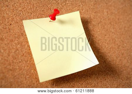 Blank Note with Push Pin