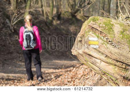 Yellow Tourist Trail