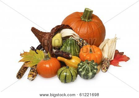 still life of pumpkin, corn, squash, and cornucopia on white