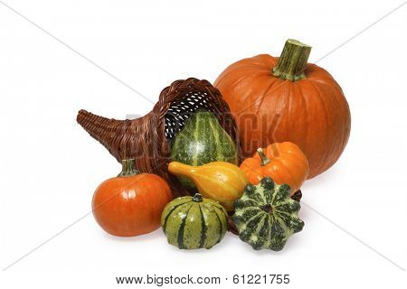cornucopia still life with large pumpkin on white