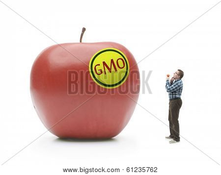 Man holding natural organic apple being bewildered when looking at giant GMO-modified red apple shot on white