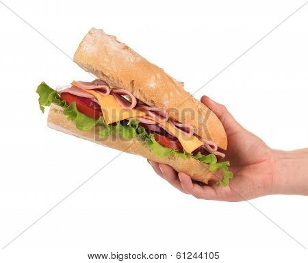 Hand holds french baguette sandwich.