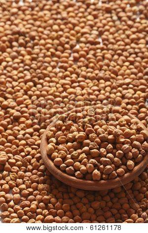 Chana Dal- Chick peas