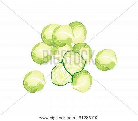 Fresh Brussels Sprout On A White Background