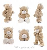 image of teddy  - Set of positions of a stuffed teddy bear - JPG