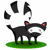 stock photo of skunk  - a simple skunk animal illustration in the grass - JPG