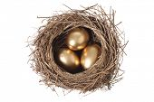 Bird's nest with three golden eggs, cut out on white background