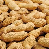 image of groundnuts  - groundnut background - JPG